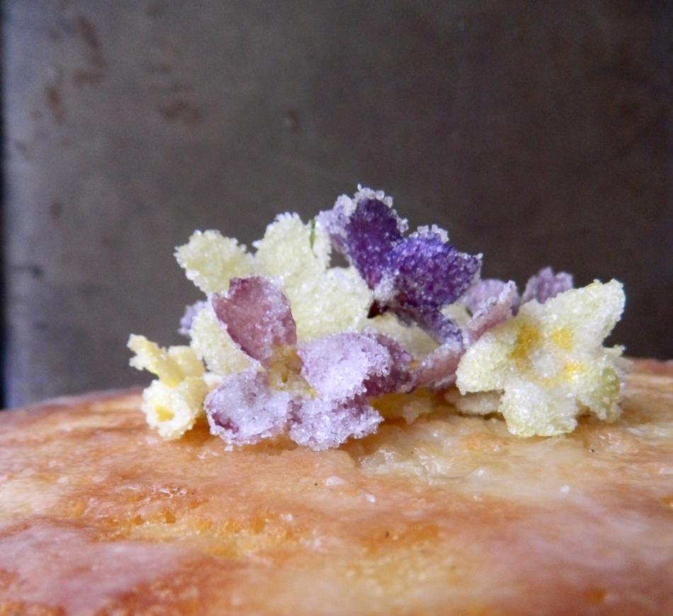 Crystallised primroses on cake