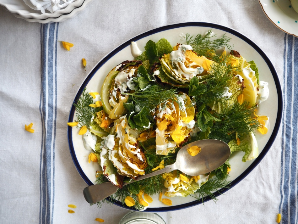 Gorse & grilled savoy cabbage salad