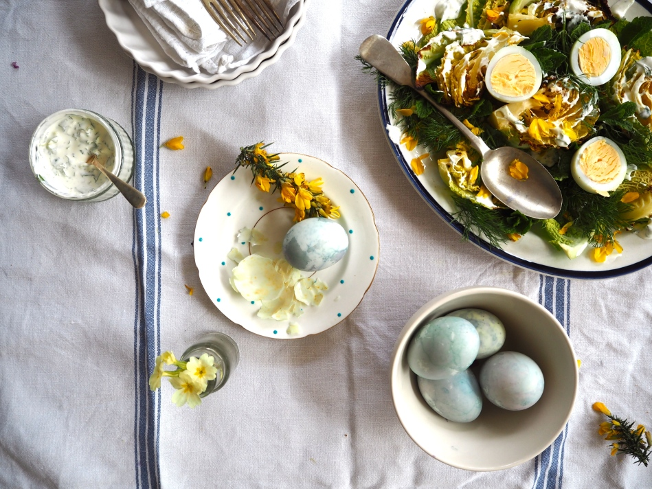 grilled-savoy-cabbage-gorse-salad-with-dyed-eggs.jpg