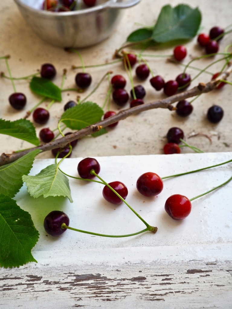 wild-cherries-edible.jpg